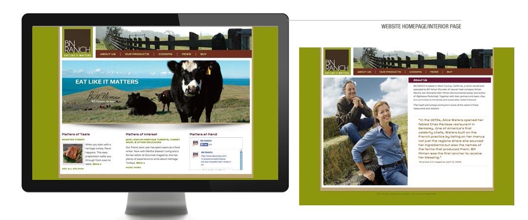 Website Homepage/Interior Page